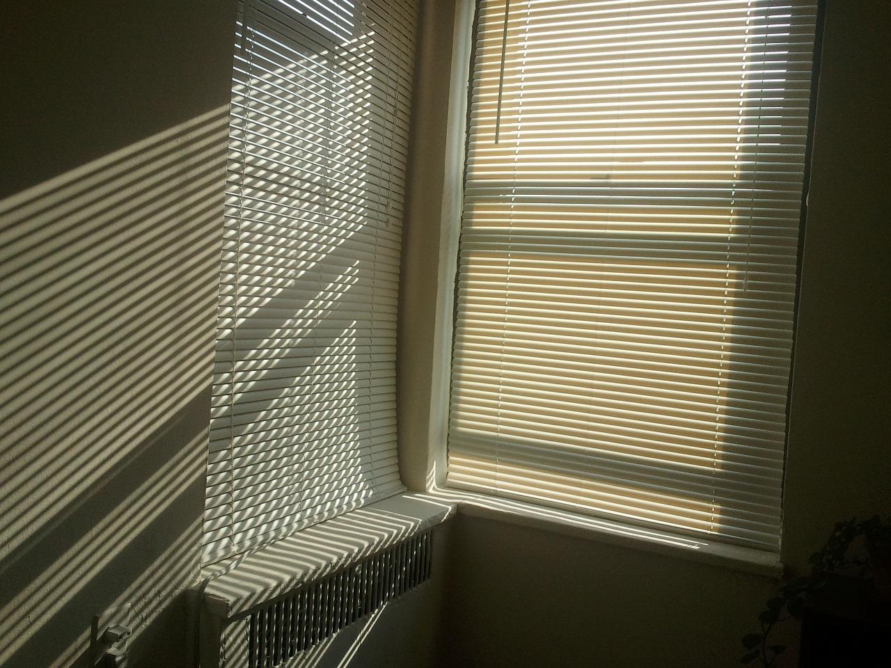 sunlight-668257_1280